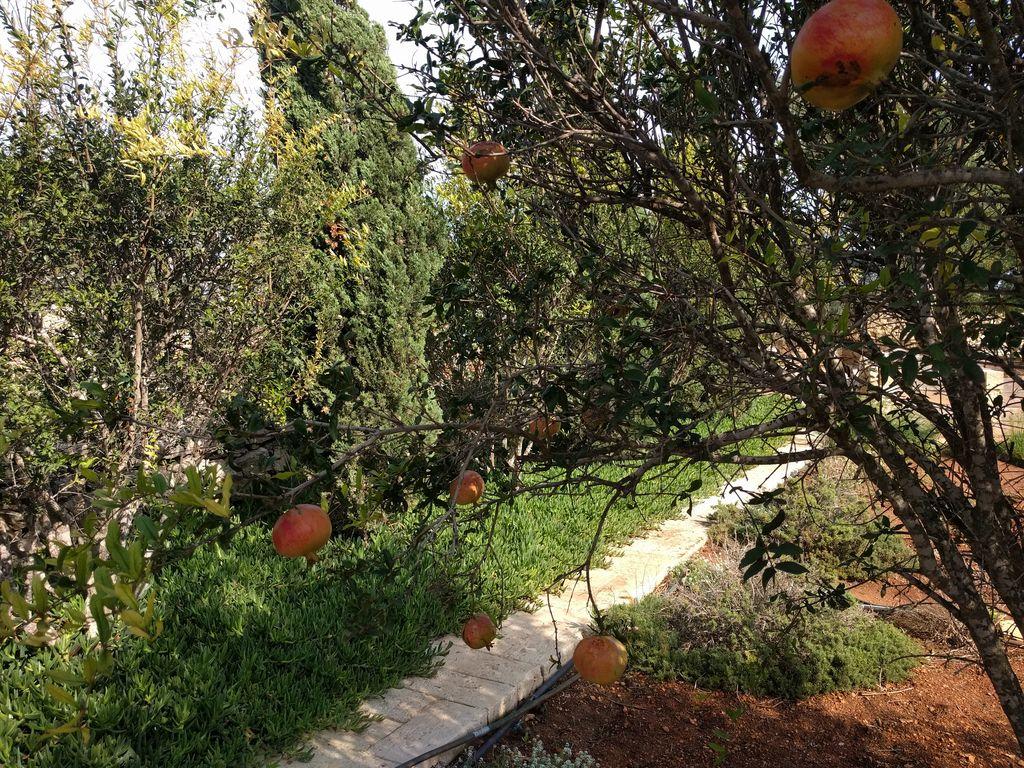 Zahrady svatého Pavla