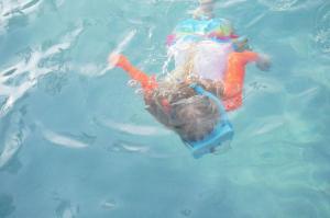 Plavající Veronika